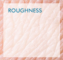 Roughness